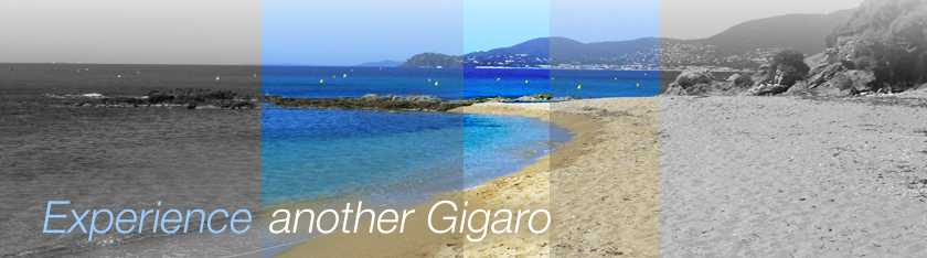 Rental Villas Gigaro